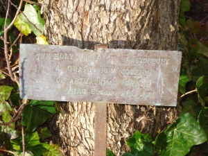 Plaque of Victoria Thorn Tree